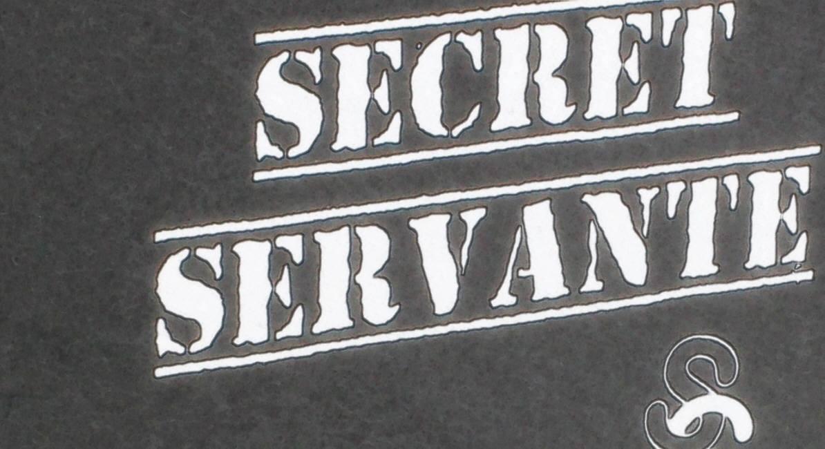 Secret Servante von Paul Goodman
