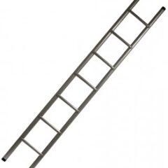Erscheinende Leiter / Appearing Ladder von Wayne Rogers