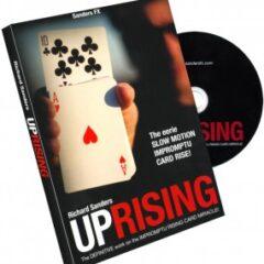 Uprising von Richard Sanders